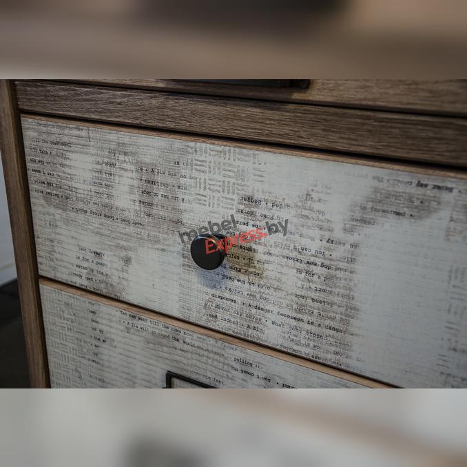 Шкаф-пенал «Дизель» 2D1S/D2