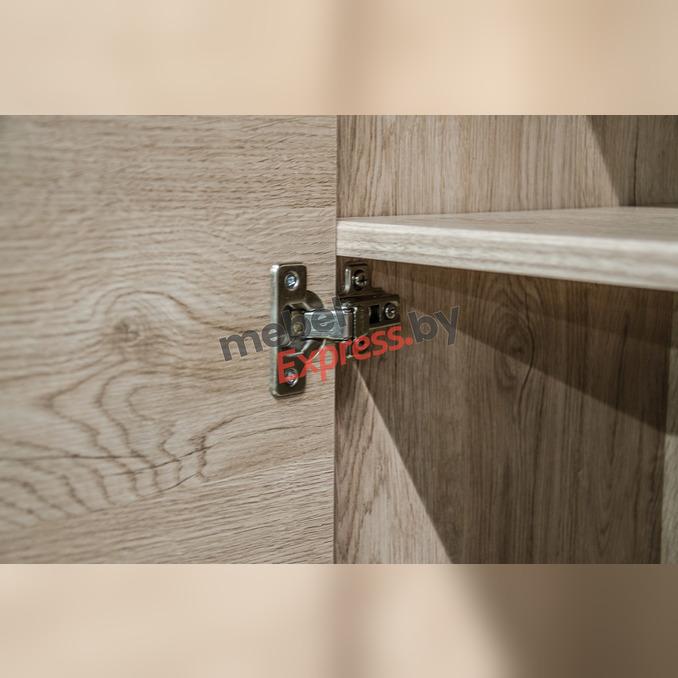 Шкаф «Дизель» 3D2SN/D3 трехстворчатый с ящиками и полками
